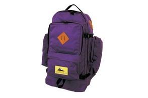 VINTAGE WING_Purple.jpg
